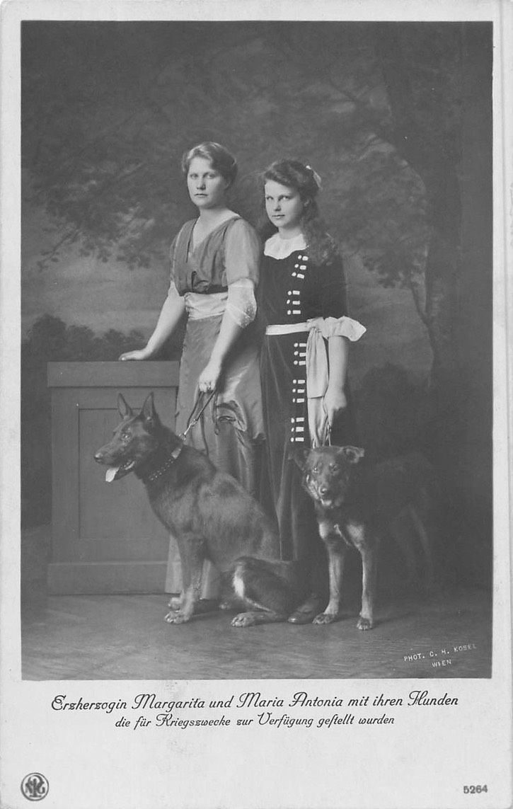1913 Archduchesses Margarethe and Maria Antonia military dog eBay detint